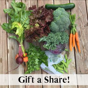 Gift a Share